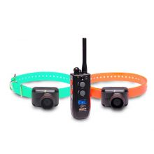 Training and Beeper 1 Mile 2 Dog Remote Trainer