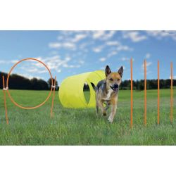 Dog Agility Starter Kit Outdoor