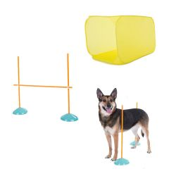 Dog Agility Starter Kit Indoor