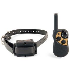 Yard and Park Remote Dog Trainer