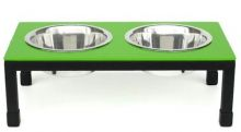 Rendezvous Double Raised Dog Bowl - Small/Green