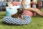 Navy Chevron Small Round Pet Bed