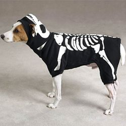 Skeleton Glow Bones Dog Costume