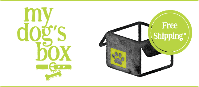 My Dog's Box by Petature