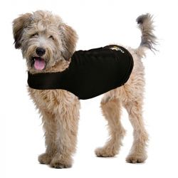 Zendog Calming Compression Shirt (Color: Black, Size: Large)