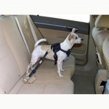 Dog Travel Harness (Color: Blue, Size: Small)