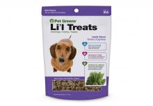 Pet Greens Li'l Treats Soft Chews (Flavor: Roasted Lamb)