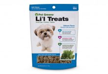 Pet Greens Li'l Treats Soft Chews (Flavor: Healthy Salmon)