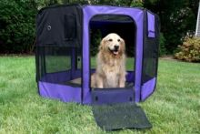 Iconic Pet Portable Soft Play Pen (Size of Product: Small)
